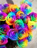 《要予約商品》 レインボウローズ花束色鮮やか すごい目立つRainbou花束 ぜひおためしを