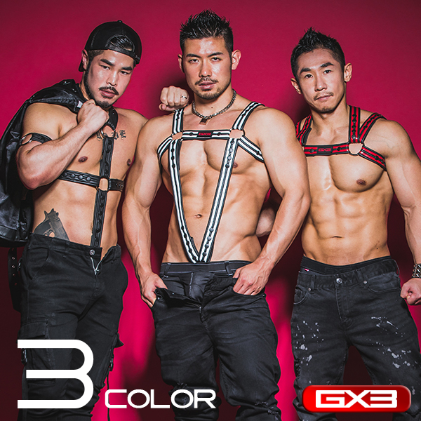 GX3 3-WAY HARNESS ハーネス