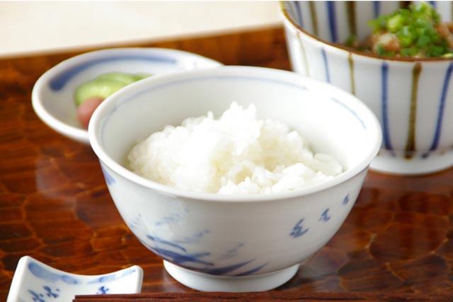 【砥部焼 森陶房】すすきの茶碗