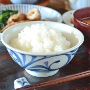 和食器・砥部焼 外底からくさの反茶碗(3.6寸)