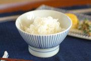 【砥部焼 梅山窯】とくさ柄の茶碗(大)