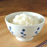 和食器・砥部焼 キノミナノの茶碗(小)