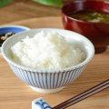 和食器・砥部焼 とくさ柄の反茶碗(3.6寸)