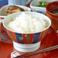 和食器・砥部焼 色絵模様の茶碗(大)