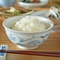 和食器・砥部焼 青達窯の茶碗