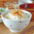 【砥部焼 陶房遊】レッドプラネットの茶碗(大)