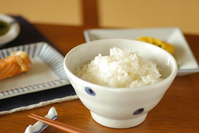 【砥部焼 梅乃瀬窯】水玉もようの茶碗