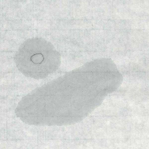 手漉き画仙紙和光