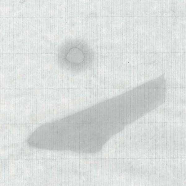 手漉き画仙紙陽春