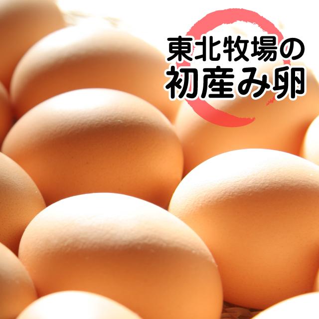 東北牧場の初産み卵「赤玉」(10個入り)