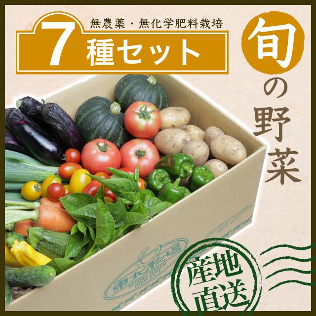 旬の野菜7種セット