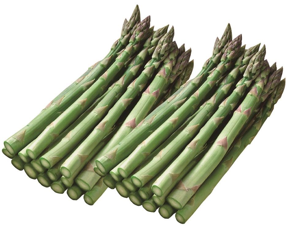 <JAふらの>ハウス栽培 グリーンアスパラガス 約1kg 【015】