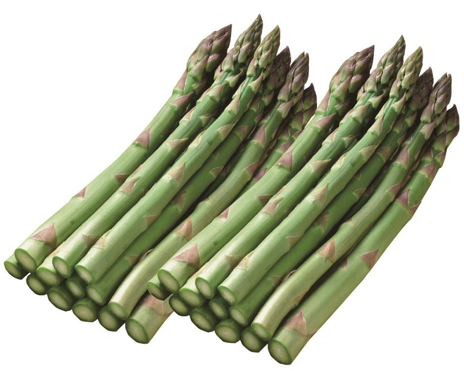<赤井川産>有機栽培グリーンアスパラガス L~Mサイズ 約600g 【020】