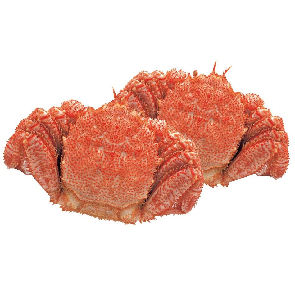 原料原産地名:北海道(オホーツク海) ボイル毛がに 2ハイ(1パイ約560g) 【D】