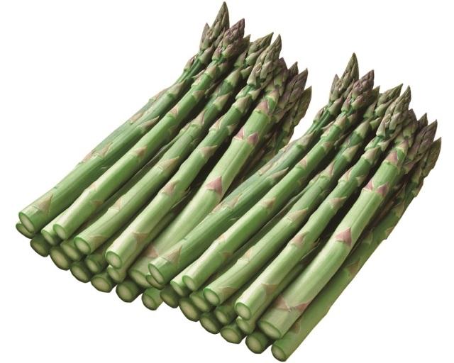 <北海道産>グリーンアスパラガス 2Lサイズ 約800g 【003】