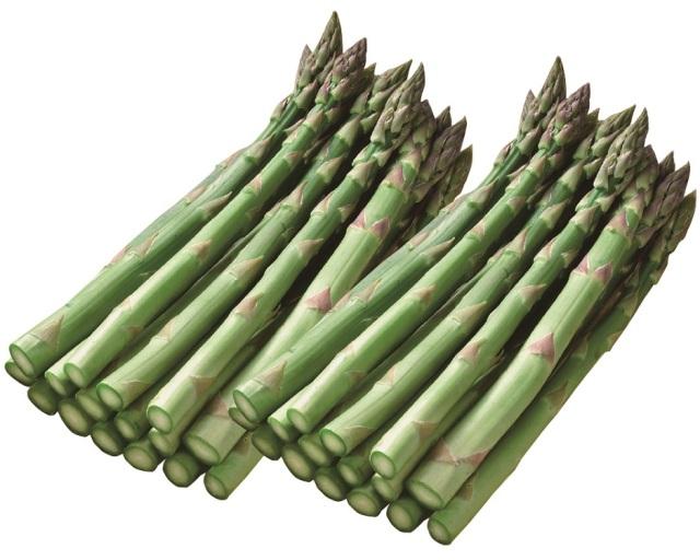 【早期割引】<JAふらの><ハウス栽培>グリーンアスパラガス 2Lサイズ 約800g 【014】