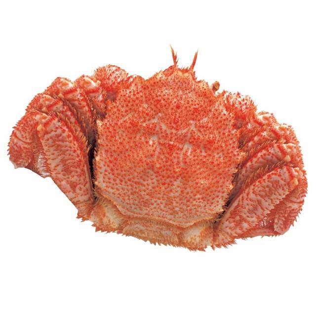 原料原産地名:北海道(オホーツク海) ボイル毛がに 1パイ(1パイ約500g) 【B】