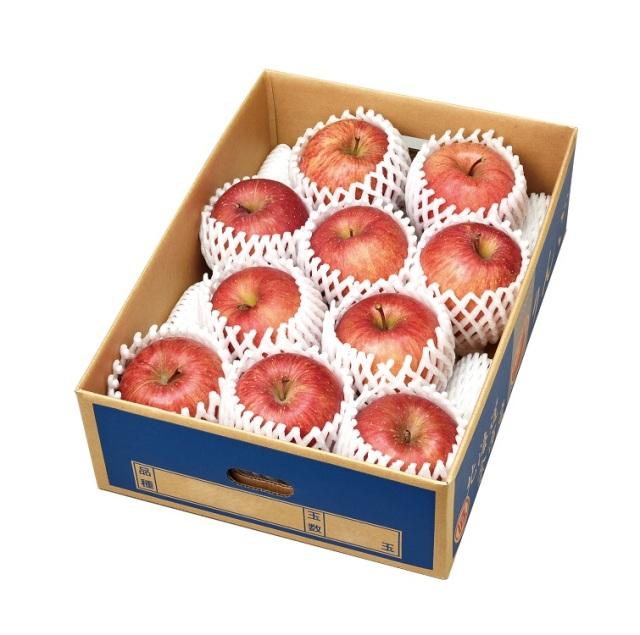 余市産ふじりんご 10玉セット 【E】