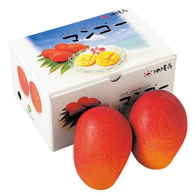 沖縄産 マンゴー 【061】