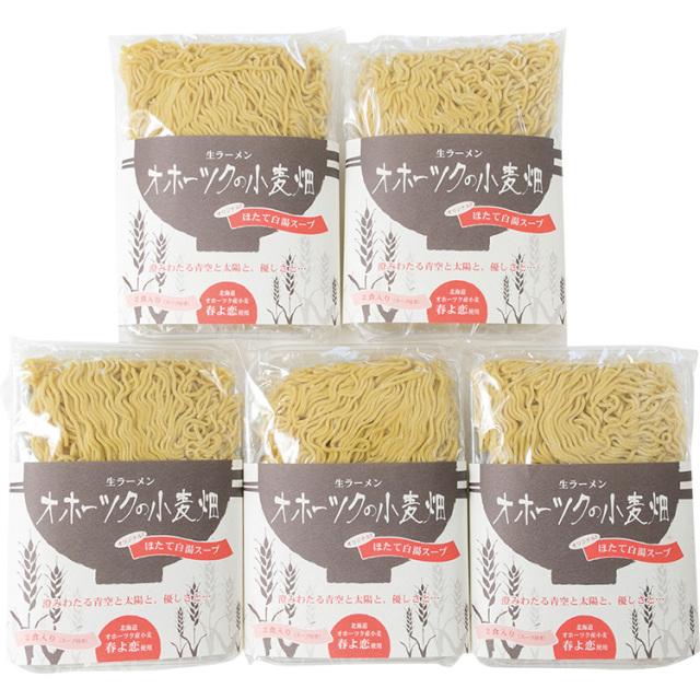ツムラ 生ラーメン オホーツクの小麦畑10食詰合せ 【517】