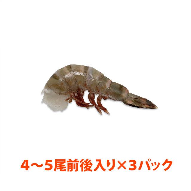 無頭シータイガー8/12 3パック