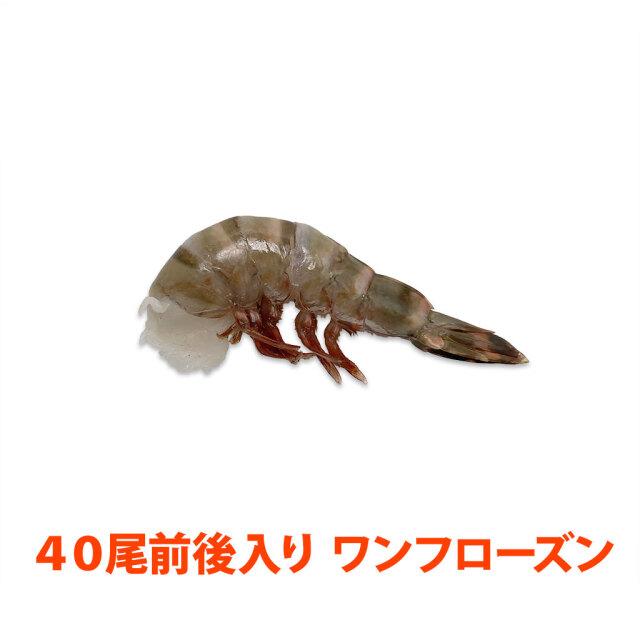 無頭シータイガー8/12 ブロック