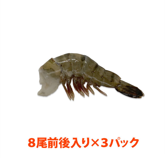 海水養殖ブラックタイガー16/20 パック
