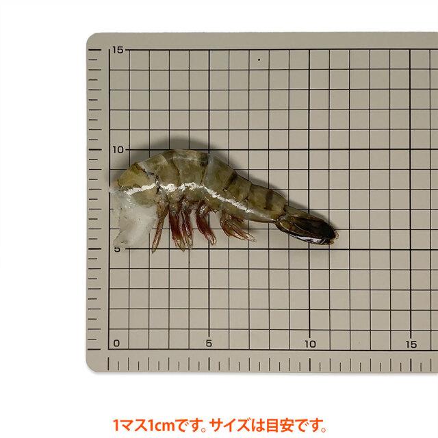 海水養殖ブラックタイガー16/20 サイズ