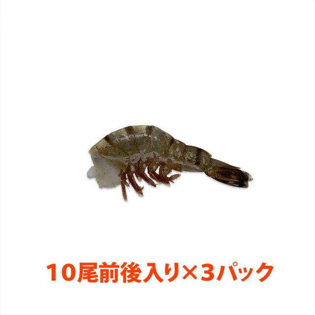 海水養殖ブラックタイガー21/25 パック