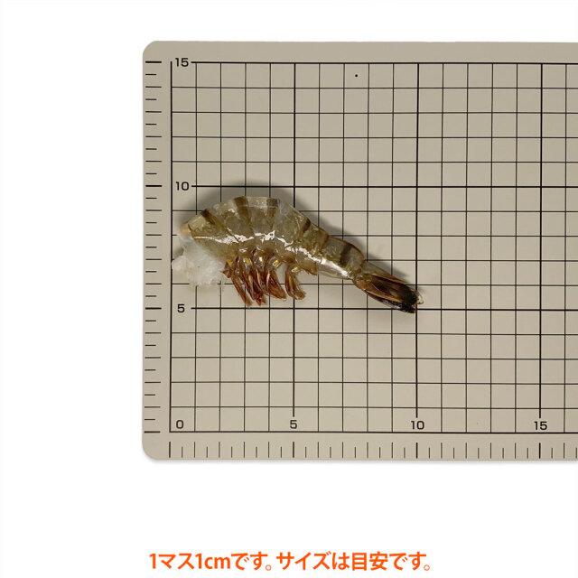 海水養殖ブラックタイガー21/25 サイズ