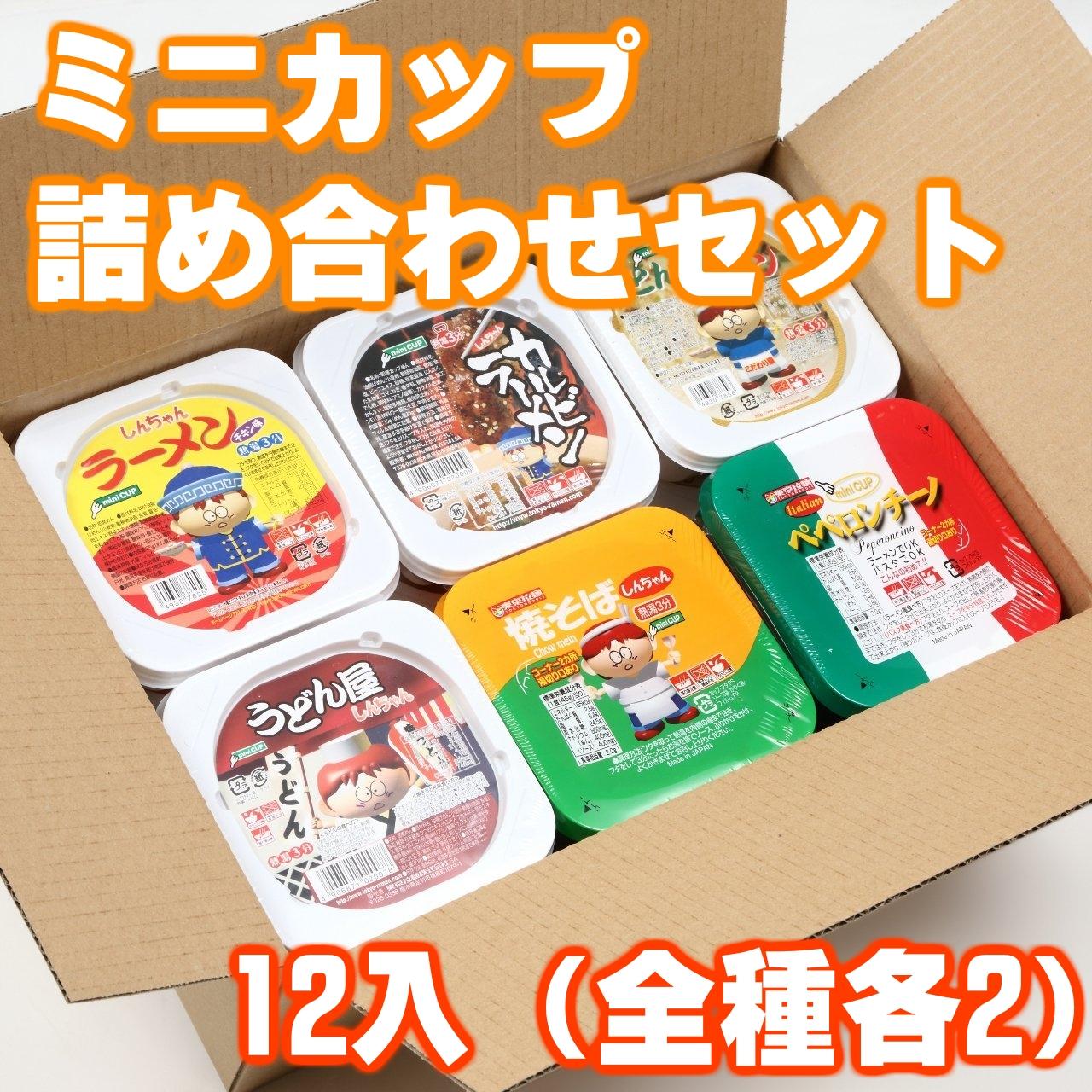 ミニカップ詰め合わせセット12入(全種各2)