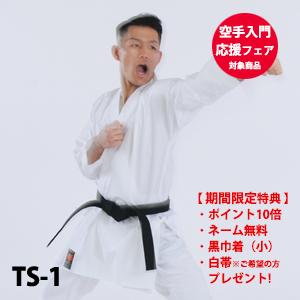 TS-1(入門応援フェア対象商品)