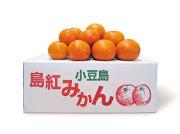 小豆島産「島紅」みかん 5kg(数量限定)