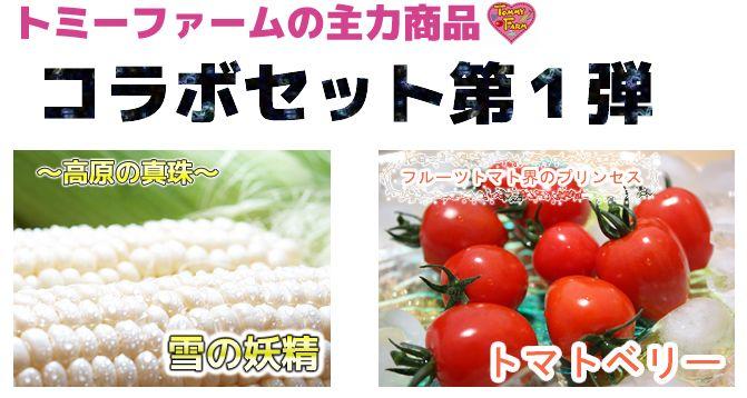 【陛下献上の品】トミーファームスペシャル!とうもろこし高原の真珠10本プラストマトベリー500グラムセット