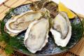 岩手県産 生食用殻つき牡蛎(20個入)【送料込み】