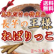 元気の源栄養満点鳥取長芋の王様ねばりっこ 送料無料(ご当地グルメ 特産品 ご贈答)