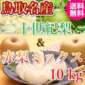 梨の名産地鳥取の二十世紀梨とおススメ旬の赤梨のミックスセット10kg(送料無料)
