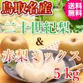 梨の名産地鳥取の二十世紀梨とおススメ旬の赤梨のミックスセット5kg(送料無料)
