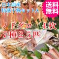 日本海 山陰 干物 鯛 ノドグロ