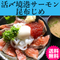 日本海活〆境港サーモンの昆布じめ 送料無料