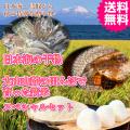 大山山麓の源流米 コシヒカリ 新米5kgと日本海の干物セット 送料無料