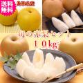 梨の名産地鳥取の旬の赤梨のミックスセット10kg(送料無料)