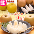 梨の名産地鳥取の旬の赤梨のミックスセット5kg(送料無料)