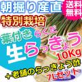 鳥取特別栽培らくだらっきょう10kgと老舗のらっきょう酢7Lセット (送料無料 特産品 ご当地グルメ ご贈答品)