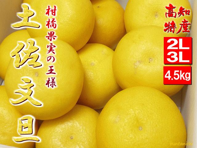 2019土佐文旦、2l3l、4.5キロ