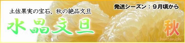 豌エ譎カ譁�譌ヲ