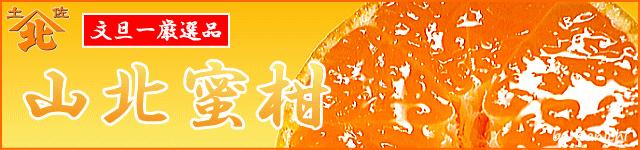 螻ア蛹励∩縺九s