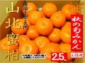 秋の山北みかん640商品2.5