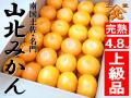 山北みかん上級品48_m