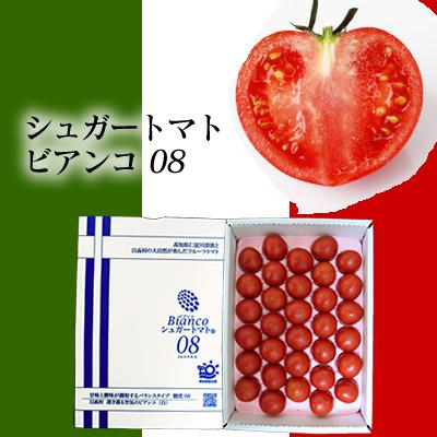 シュガートマト32玉入